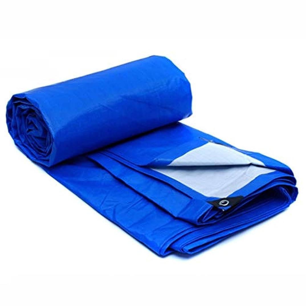 忠実な足偏見防水シート防水雨プラスチック日除け車トラック日除け布テント布 FENGMIMG (色 : Blue white, サイズ さいず : 4*3m)