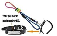 【オーダーメイド】リード 首輪 セット 迷子札・名札・IDタグ・ネームプレート 大/中/小型犬 ベーシック首輪 無料で名前や電話番号刻印する ペット用品 アクセサリー ドッグ用品 ブラック M
