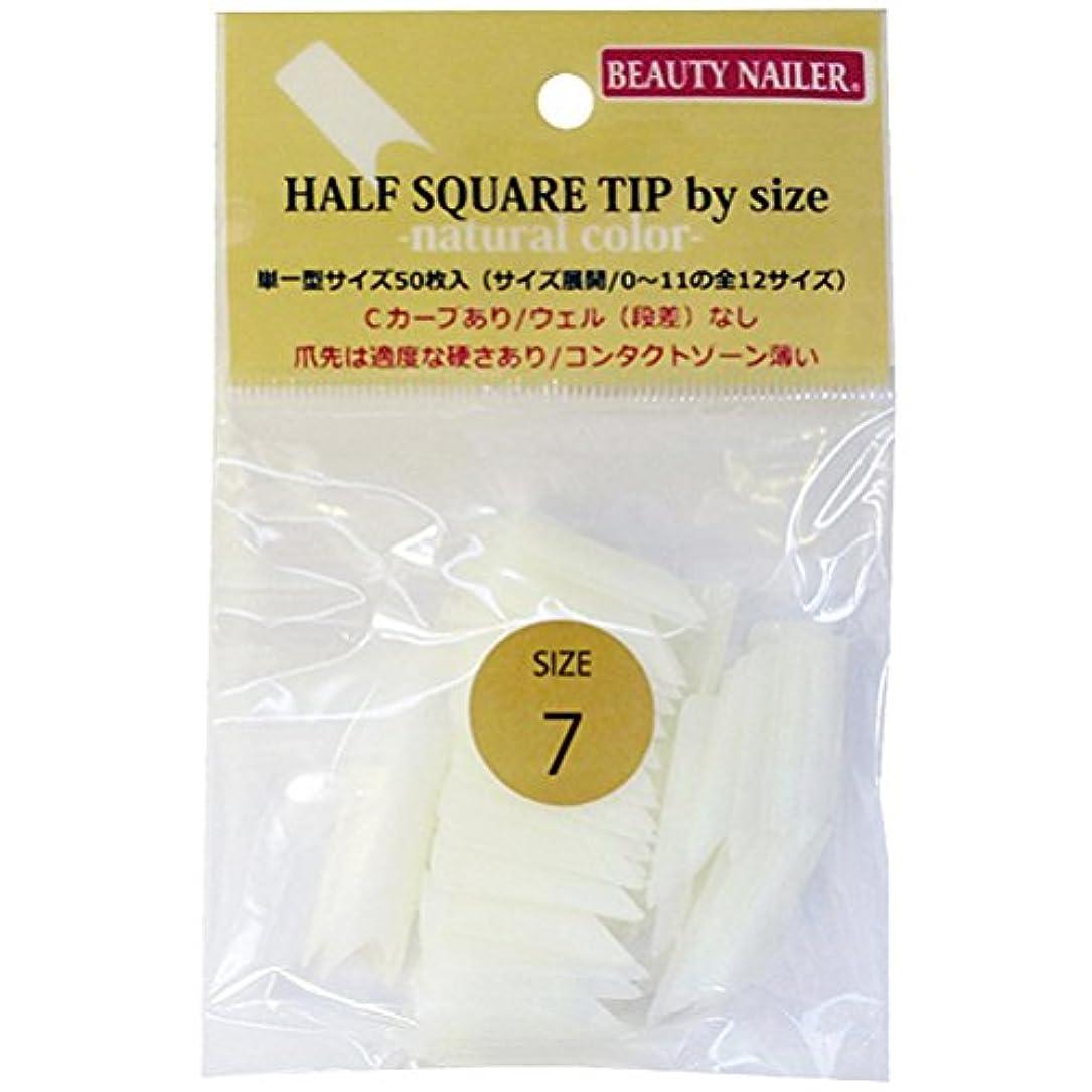 子塩熱望するハーフスクエアチップバイサイズ(HST-7)