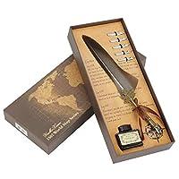 フェザークイルペン、書道クイルインクディップペンセットインクと5本の金属製のペン先ギフトボックスのクラフトペン(グレー)
