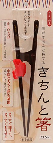 イシダ 矯正箸 きちんと箸 おとな用 21cm 右利き
