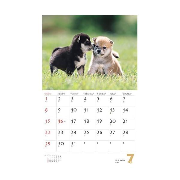 カレンダー2018 柴犬 (ヤマケイカレンダー...の紹介画像9