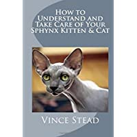 How to Understand and Take Care of Your Sphynx Kitten & Cat
