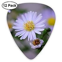 エレクトリックギター、アコースティックギター、ギターセレクション12ピースに適した紫色の花。