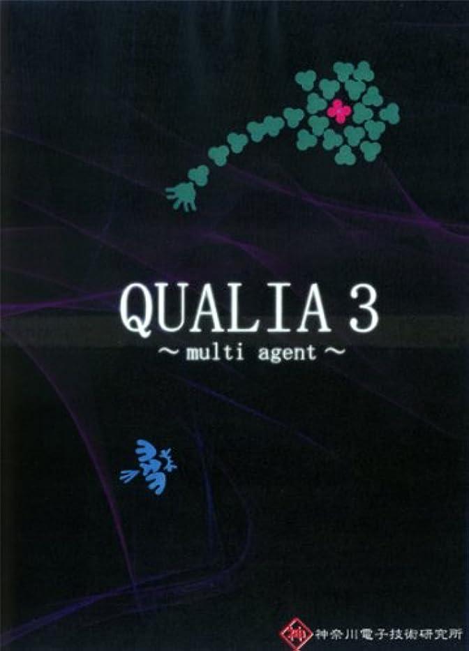 和解する疎外失うQUALIA3~multi agent~(神奈川電子技術研究所)[同人PCソフト]