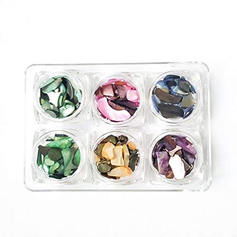 キャンドル苗解凍する、雪解け、霜解けSnifu シェルネイル 貝殻石 6色セット 自然風 超薄 シェルフレーク 夏ネイル 封入 ケース入り