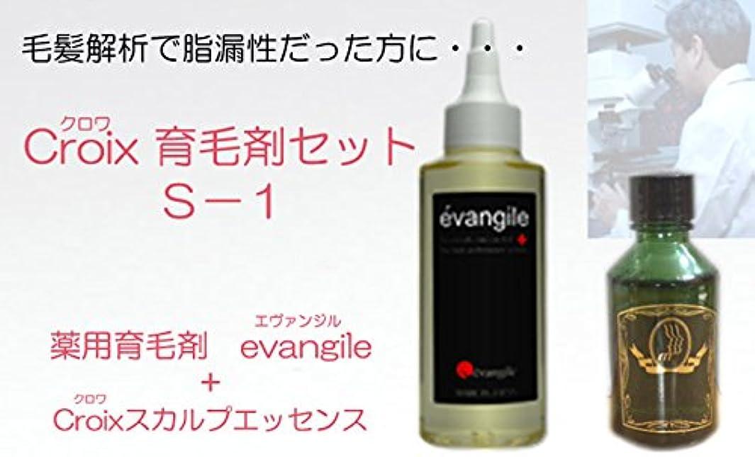 アコードシャワー利用可能CroixスカルプエッセンスS-1セット Croix育毛剤セットS-1(1ヶ月分)
