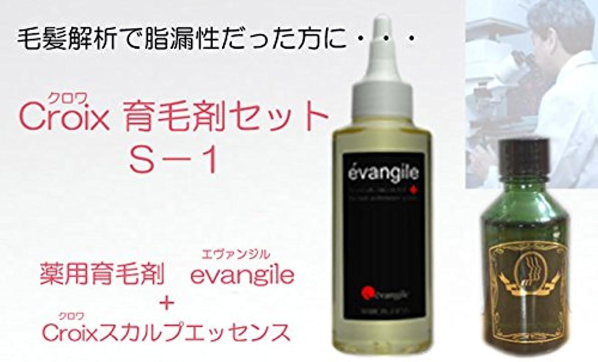 羨望スライスグラフィックCroixスカルプエッセンスS-1セット Croix育毛剤セットS-1(1ヶ月分)