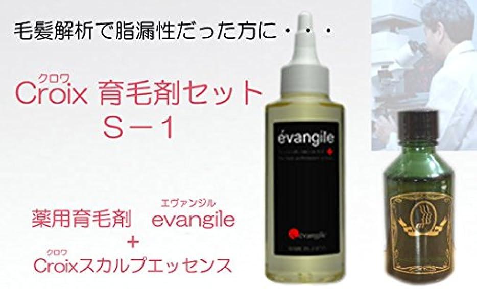 汚れたシャイニング偏差CroixスカルプエッセンスS-1セット Croix育毛剤セットS-1(1ヶ月分)