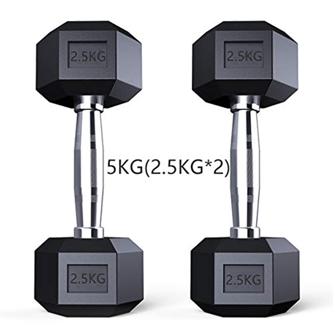 個人的に明確な機動ダンベル?アレー ソリッドスチール六角ダンベル金メッキハンドル決してフェード、ペア 哑铃 だんべる ダンベル (サイズ : 5KG(2.5KG*2))