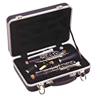 Guardian CW-041-CL Clarinet Case Multi-Coloured