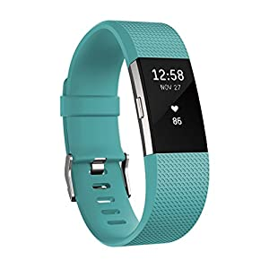 Fitbit フィットビット 活動量計 Cha...の関連商品4