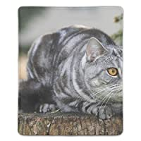 パソコンデスクパッド マウスパッド 多機能 防水性 耐油性 長寿命 携帯便利 面白い猫