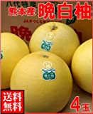 南国フルーツ 熊本県八代産 晩白柚(ばんぺいゆ)4玉