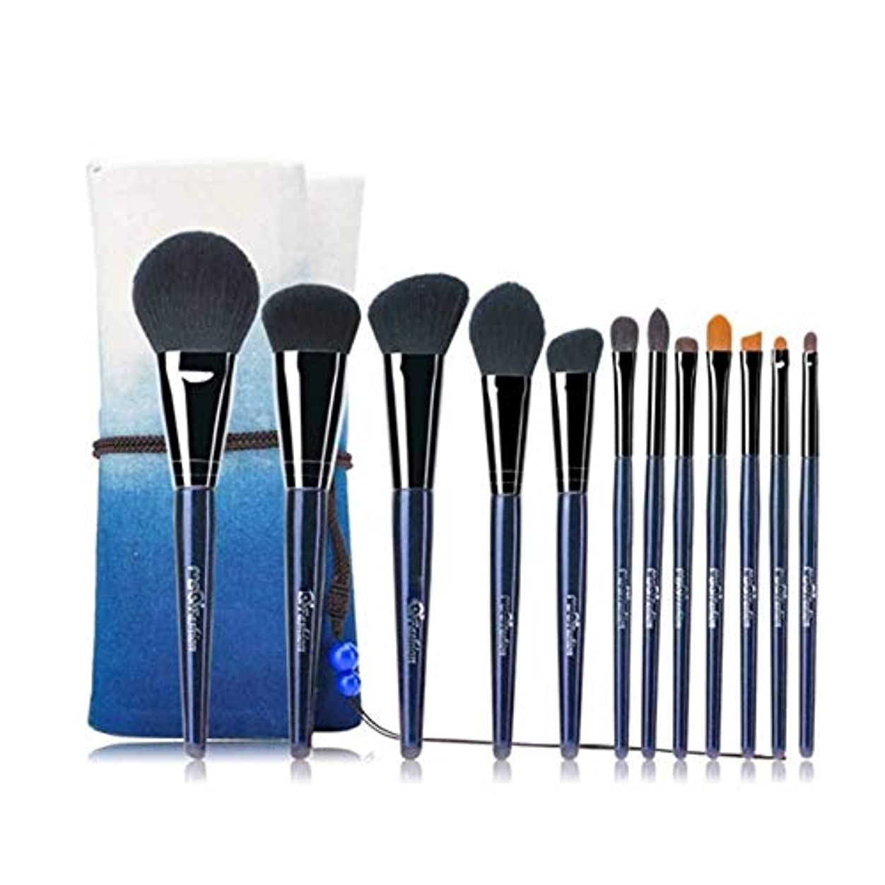 糸雪継承XIAOCHAOSD 収納袋、初心者メイクブラシセット、ソフトで快適でメイクブラシ、12メイクブラシセット、メイクブラシのフルセット、 (Color : Blue)