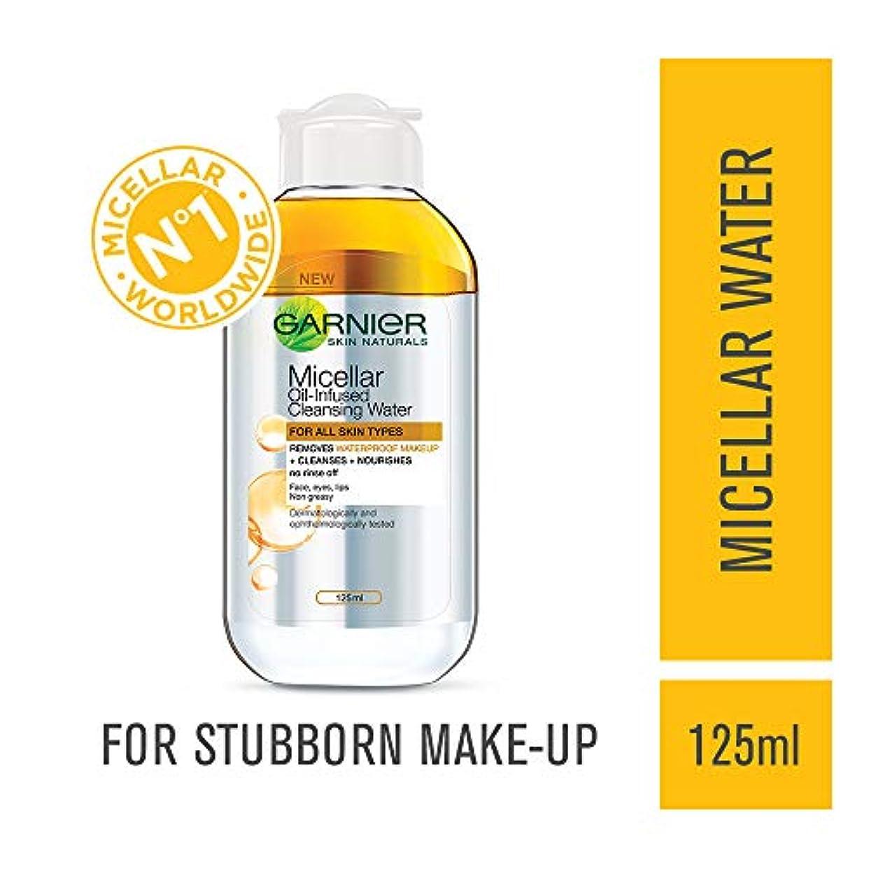 教育ヘッジもろいGarnier Skin Naturals Micellar Cleansing Bi Phase Water, 125ml