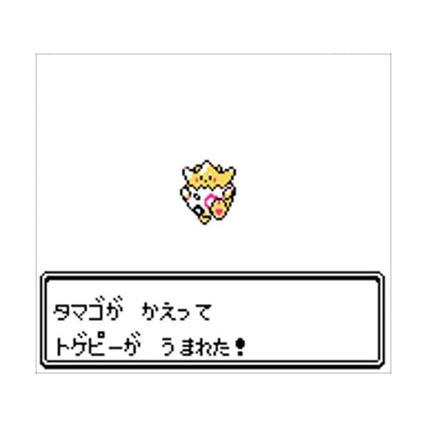 ポケットモンスター 銀 専用ダウンロードカード...の紹介画像6