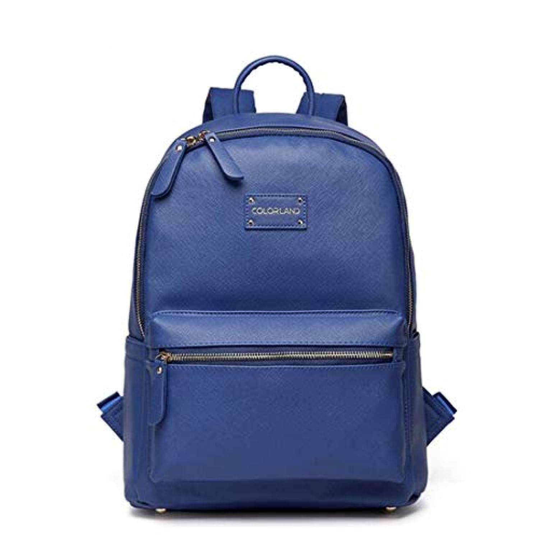 Neconyan ママのための軽量母親のおむつリュックサックバッグ、ベイビーバッグ、ママのためのおむつのベビーバッグ (Color : ブルー)