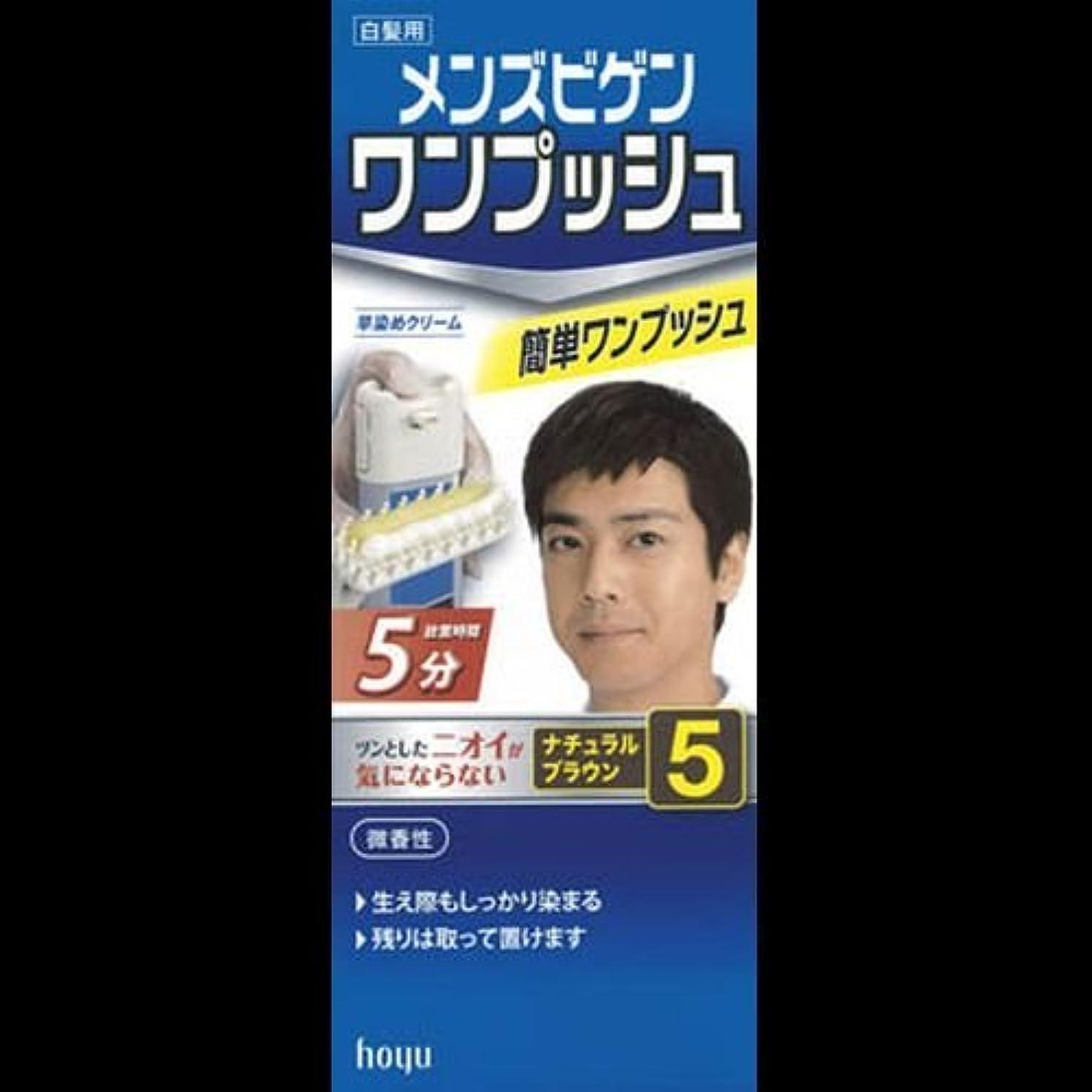 温帯刺繍プラスメンズビゲン ワンプッシュ ナチュラルブラウン 5(40g+40g) ×2セット