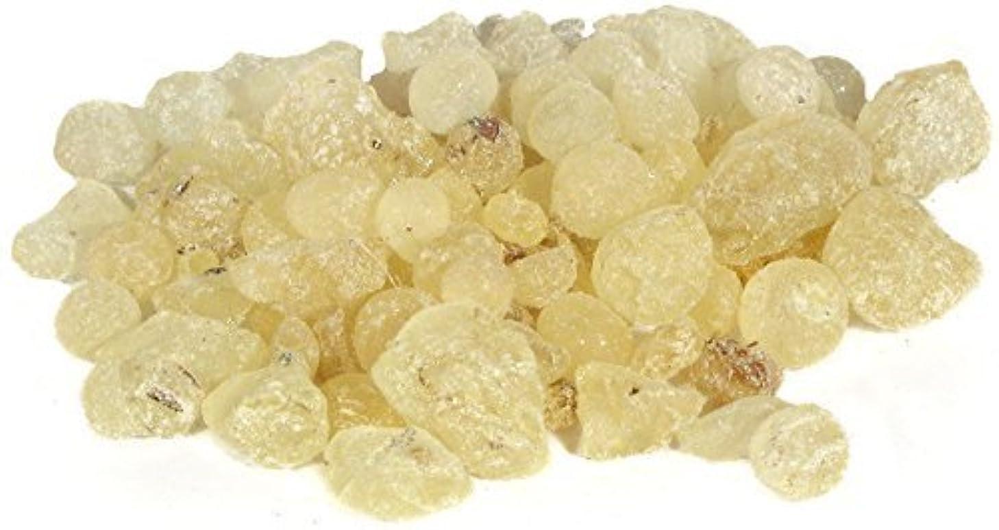 ミシン目小包枢機卿treasure. of.エジプトMastix Mastic樹脂Gum Tears自然Incense Rock BokhorのみNot for Eating 3 OZ = 85 GM