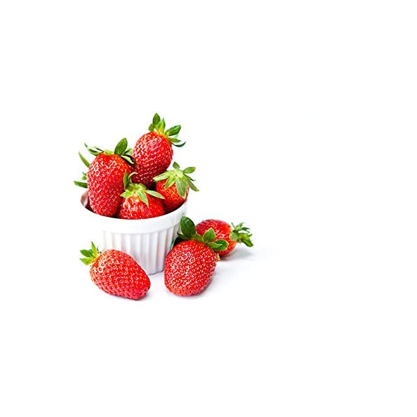 スドー 100%フルーツ ストロベリー430gの紹介画像4