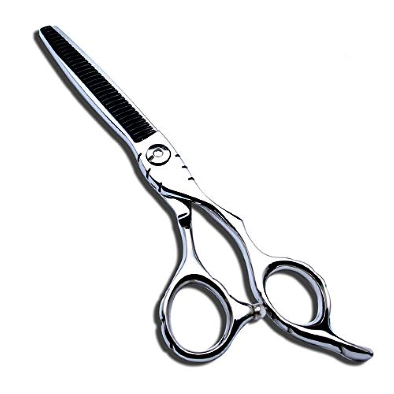 期限テント改修する理髪用はさみ 6インチ美容院プロのヘアカットはさみ440Cヘアカットはさみステンレス理髪はさみ (色 : Silver)