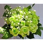 グリーンローズの花束 エメラルド♪ 緑色のバラ100本&カスミ草、グリーン付きバラの花束(生花))【お祝い・記念日・誕生日・フラワーギフト・バラ】