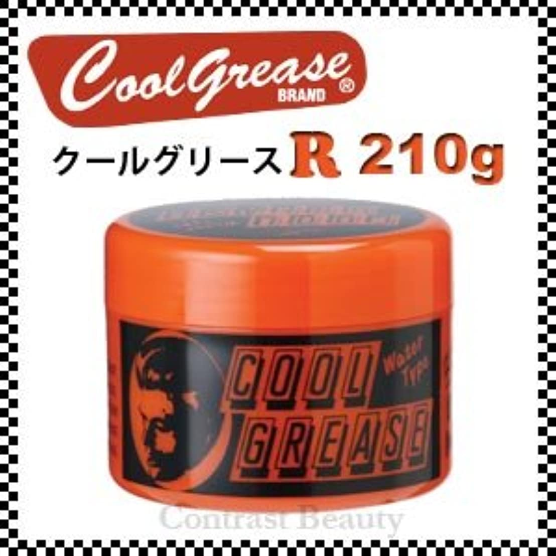 【X5個セット】 阪本高生堂 クールグリース R 210g