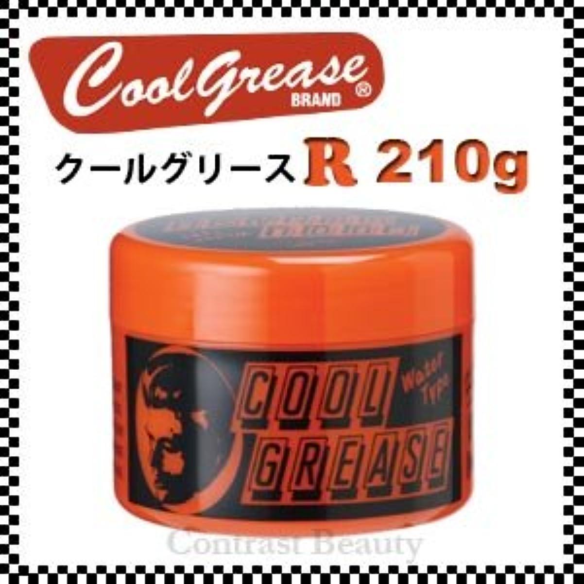 マナー状態同様に【X5個セット】 阪本高生堂 クールグリース R 210g