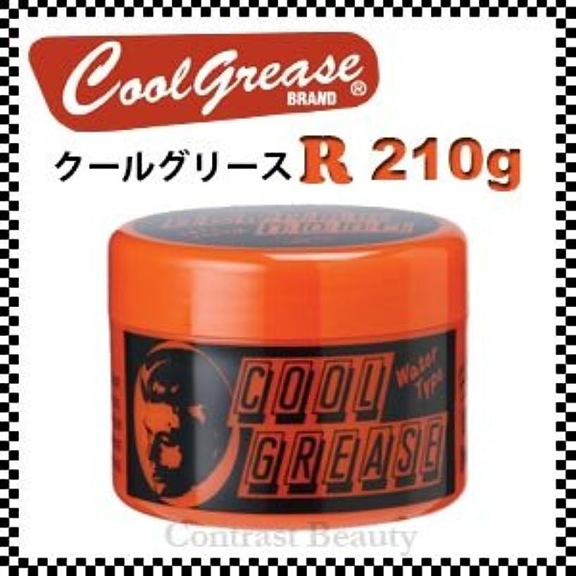 ネスト食事シンク【X2個セット】 阪本高生堂 クールグリース R 210g