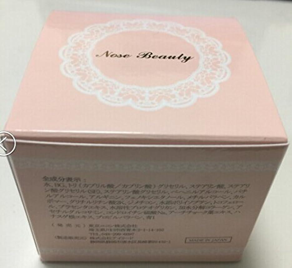 文アドバイス農村ノーズ ビューティー Nose Beauty