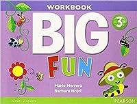 Big Fun Level 3 Workbook with Audio CD