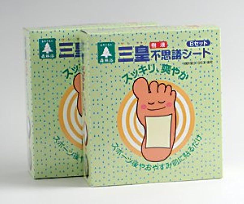 隙間温かい勃起三皇(樹液)不思議シート Bセット 【2箱セット】