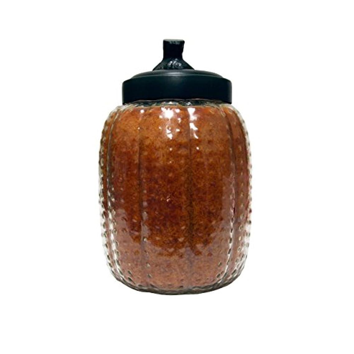 呼吸ビタミン不快A Cheerful Giver Autumn Orchards Pumpkin Jar Candle, 26-Ounce by Cheerful Giver [並行輸入品]