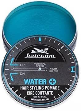 hairgum(ヘアガム) Water+ Pomade 100g ヘアガム ウォータープラス 水性 ポマード