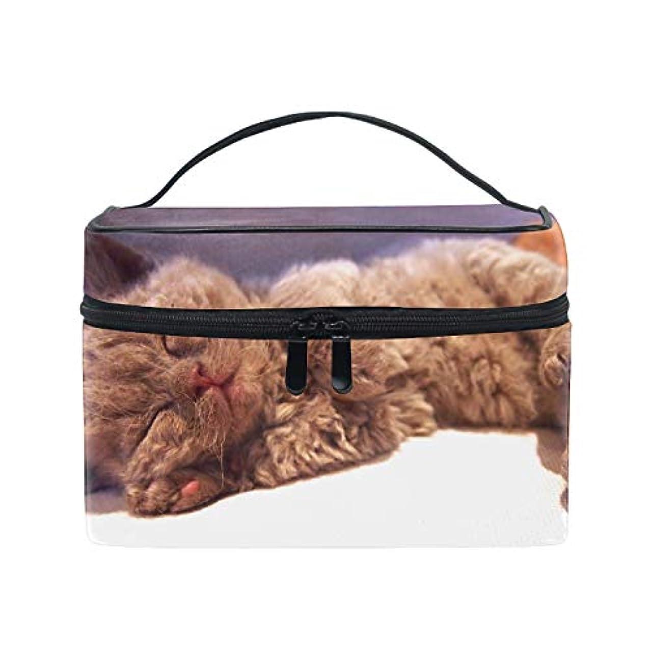 雄弁なデッキ霊セルカークレックス子猫眠る猫化粧道具 小物入れ おしゃれ 高級感 大容量 收納抜群 かわいい プレゼント