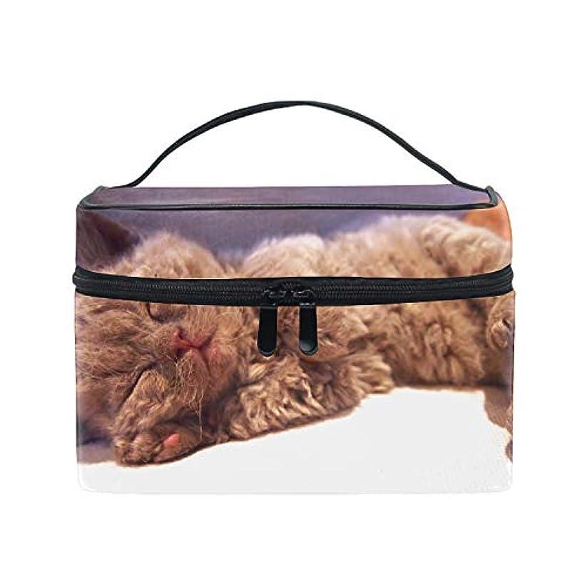 不規則な熱製油所セルカークレックス子猫眠る猫化粧道具 小物入れ おしゃれ 高級感 大容量 收納抜群 かわいい プレゼント