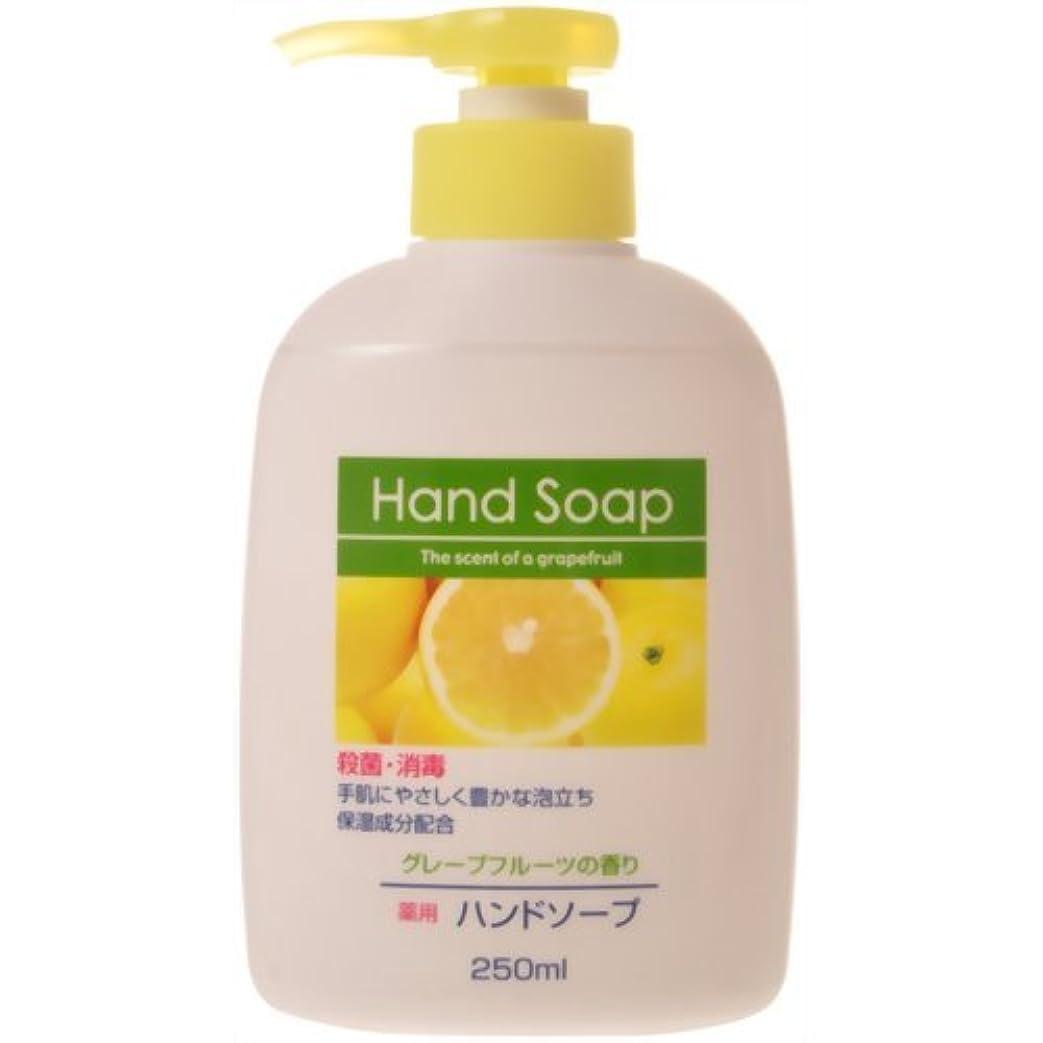 ホステルモルヒネ抵抗する薬用ハンドソープ グレープフルーツの香り 本体 250ml