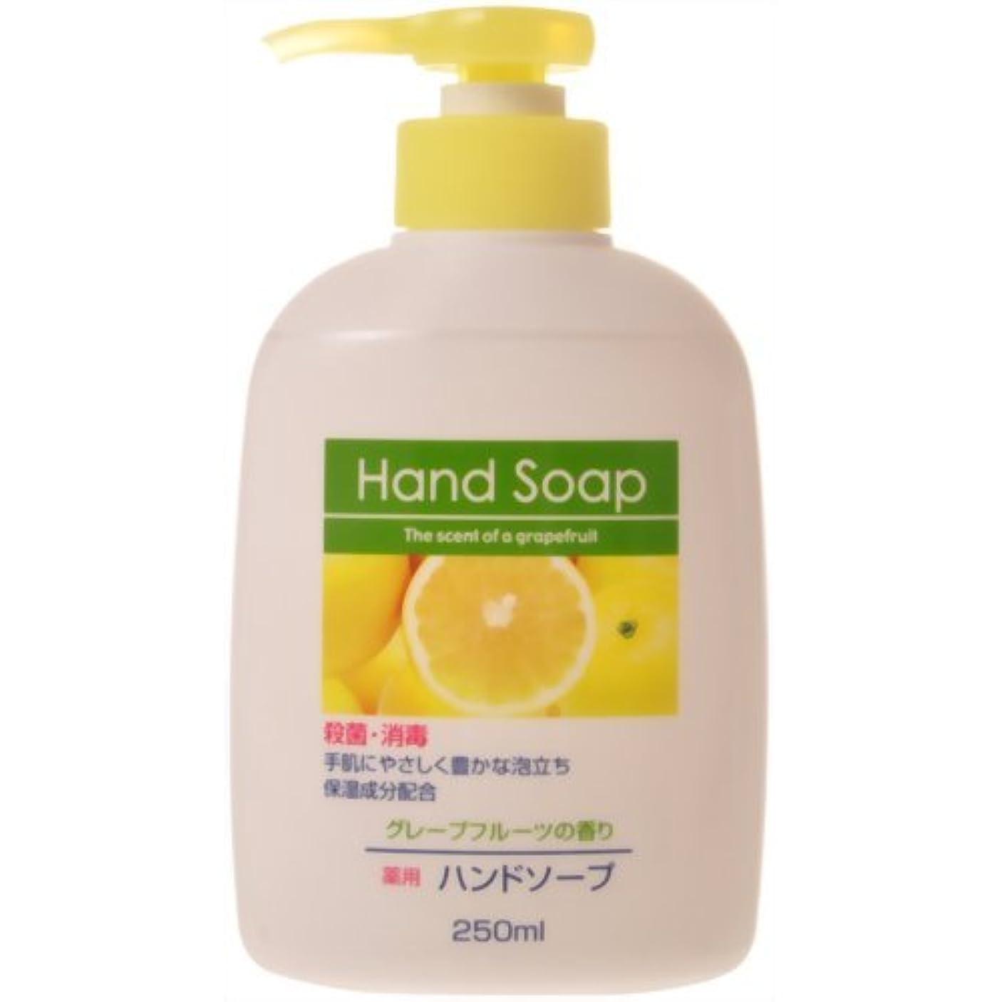 過半数おしゃれな雰囲気薬用ハンドソープ グレープフルーツの香り 本体 250ml