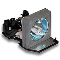 bl-fp200C互換Optomaプロジェクターランプハウジング、150日保証付き