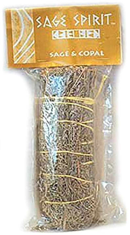 案件アーカイブ甘やかすSage & Copal Smudge Stick 7