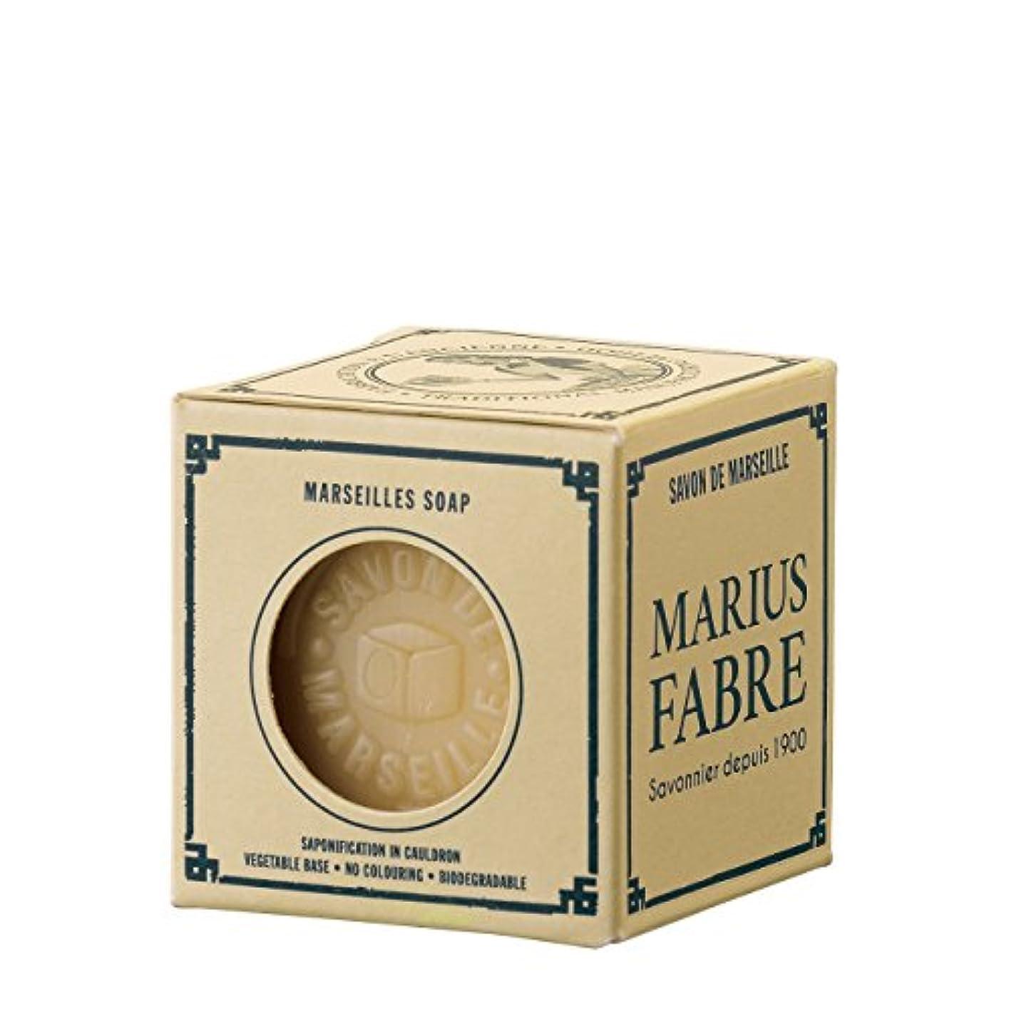 イブニング後ろに収まるサボンドマルセイユ ネイチャー パーム (100g)