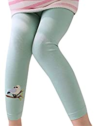17bab57db3bdb Amazon.co.jp: グリーン - 靴下・タイツ / ガールズ: 服&ファッション小物