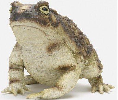 メガシリーズ ガマガエル カエル 蛙