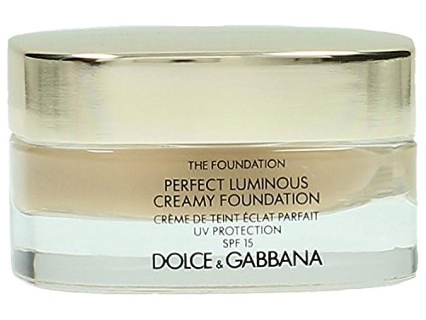 禁止混合した底Dolce & Gabbana The Foundation Perfect Finish Creamy Foundation SPF 15 - # 120 Natural Beige 30ml