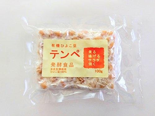 有機ひよこ豆テンペ100gx10個