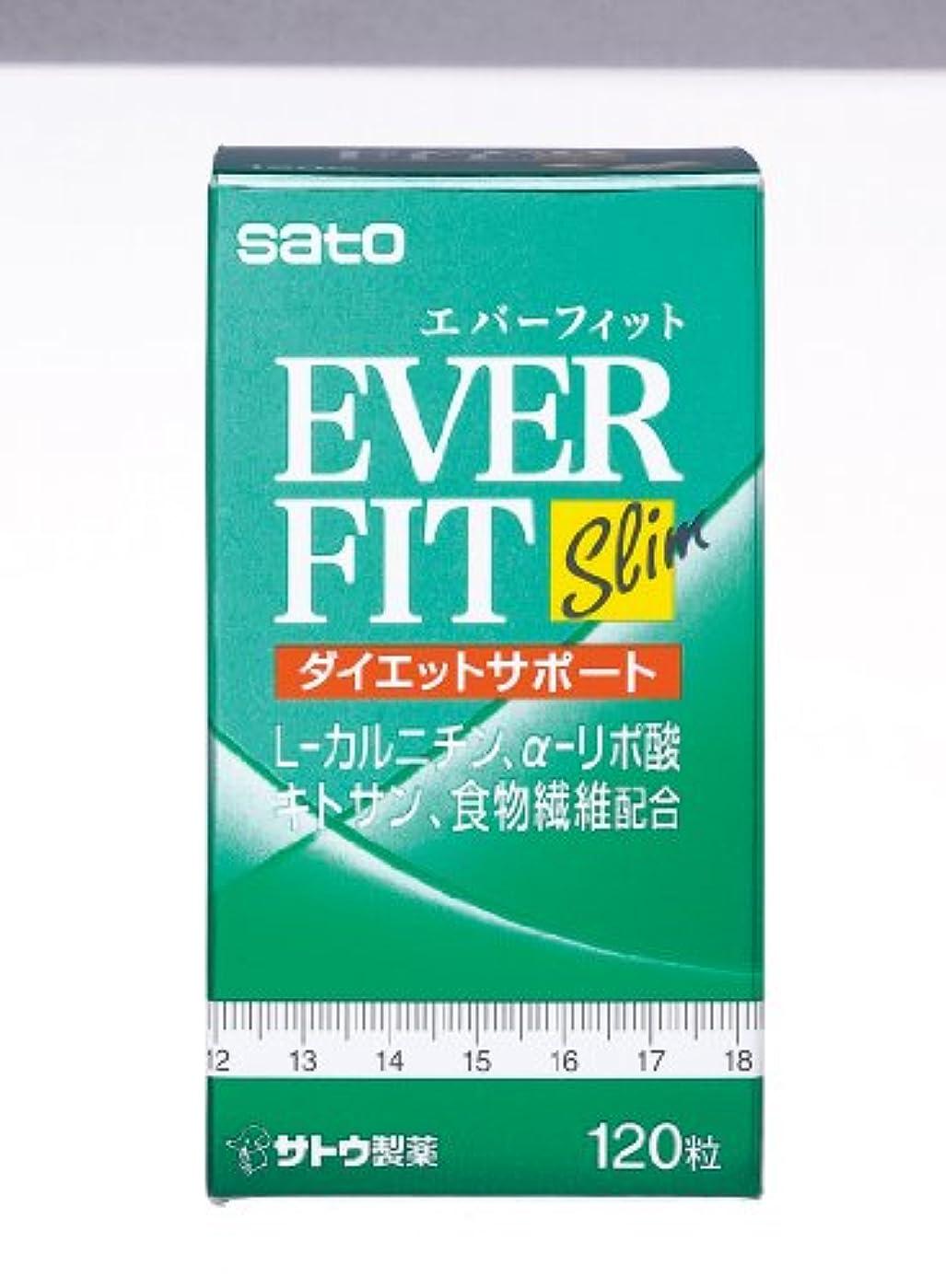 雑品材料表現エバーフィット 120粒