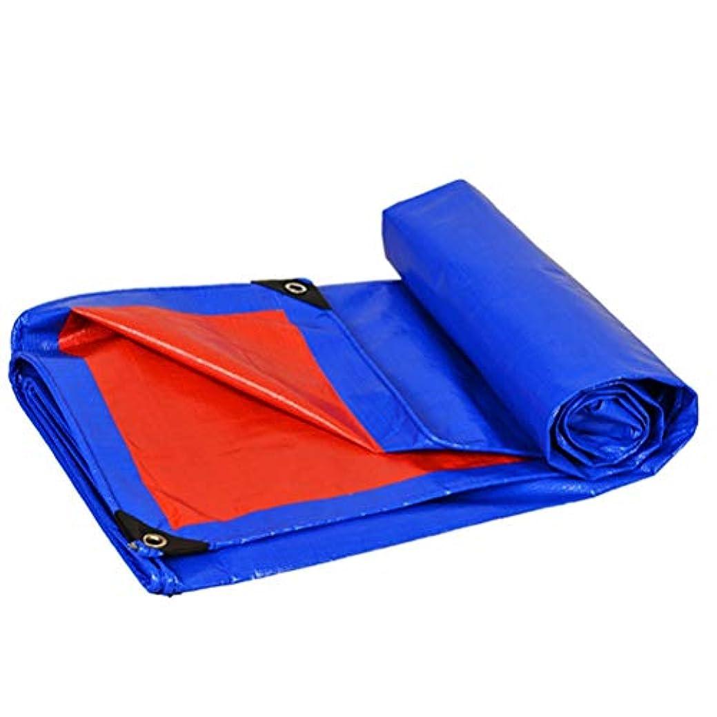 許さない聴覚トーナメント防水シートリノリウム 防水シート厚さ3 M X 4 M PE防水シート防水ブルータープシートプレミアム品質カバータープ屋外キャンプ用(3 X 4 M) ZHANGQIANG (Color : A, Size : 5*10m)