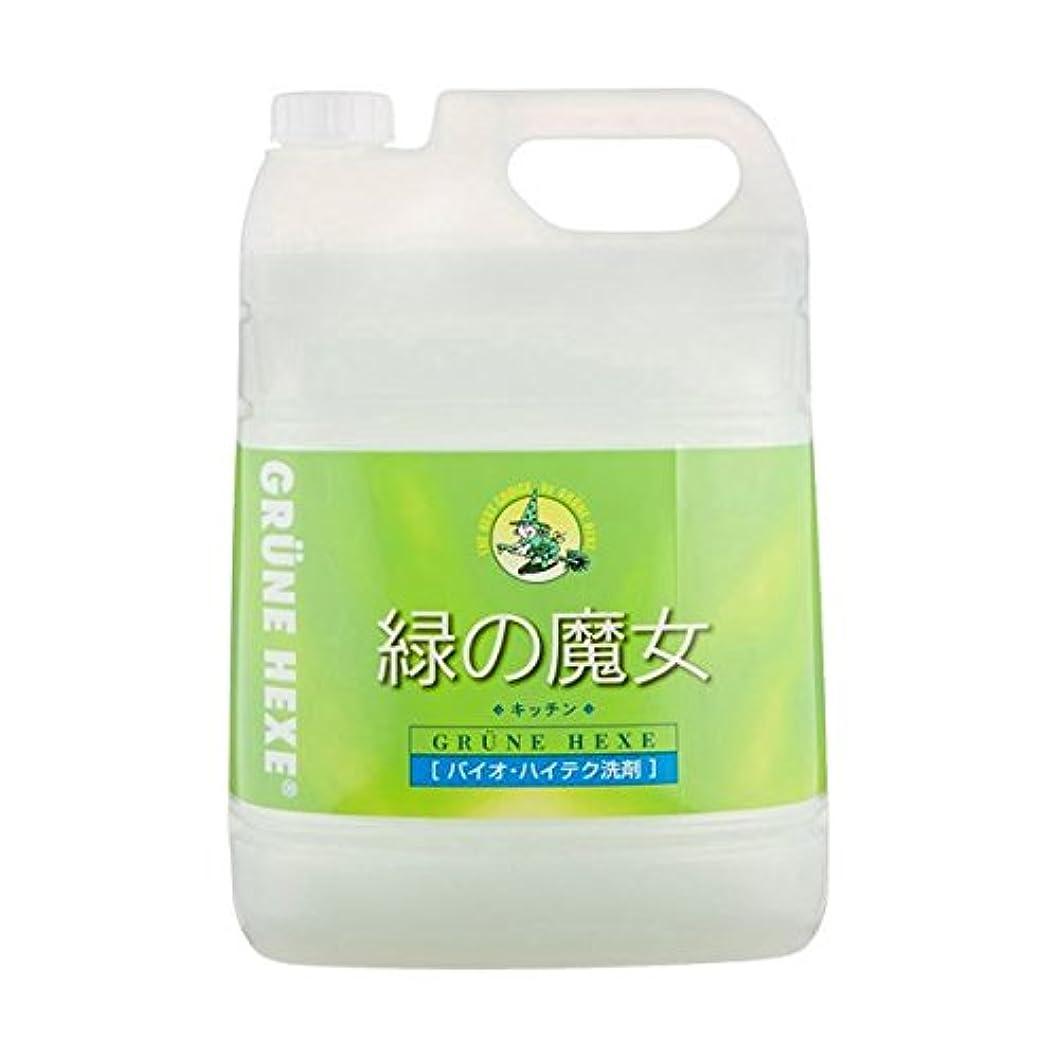 農業差別する毎週緑の魔女 キッチン 業務用ボトル5L×2本