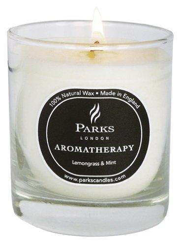 Parks(パークス) Aromatherapy フレグランスキャンドル レモングラス&ミント PKNW14